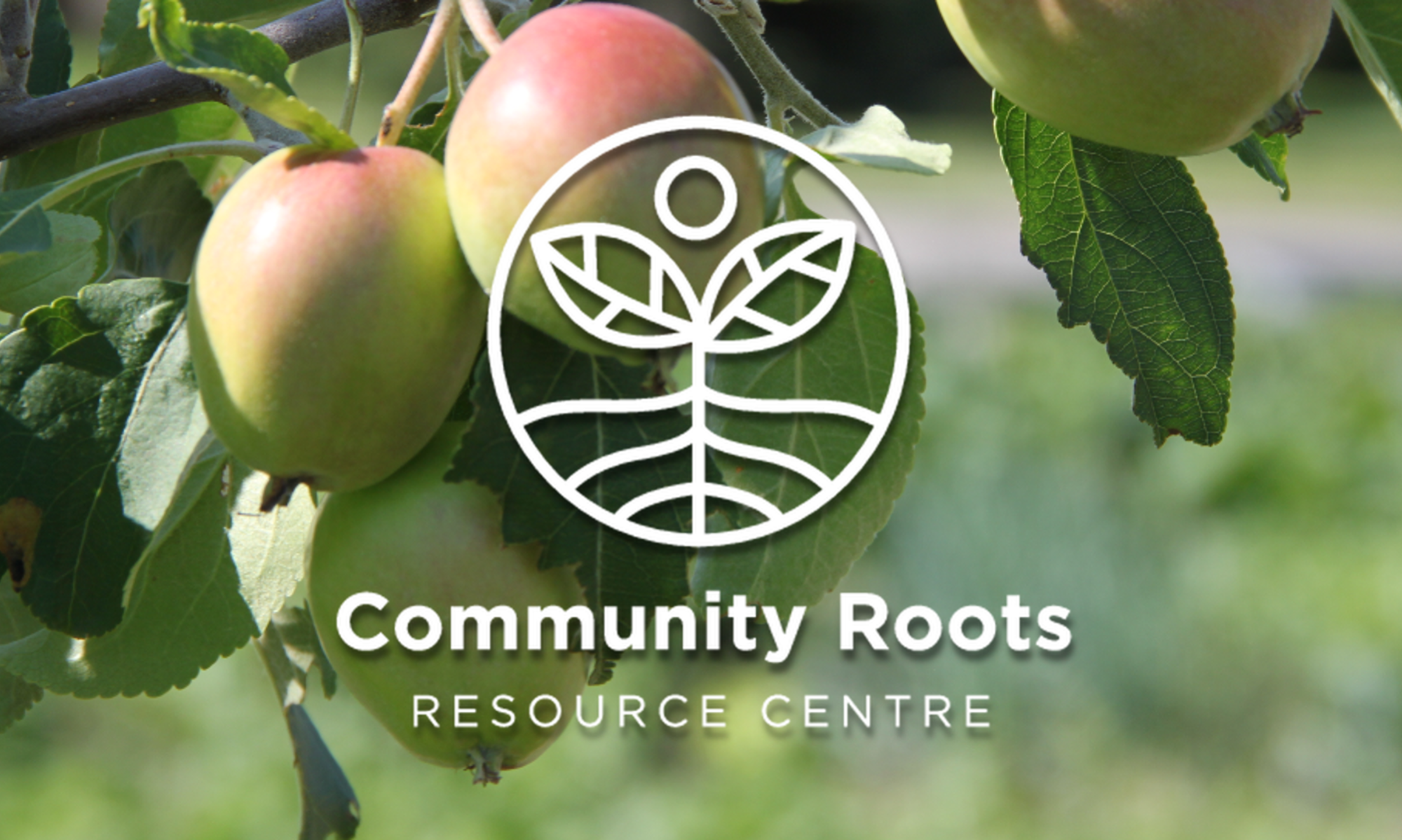Community Roots Resource Centre